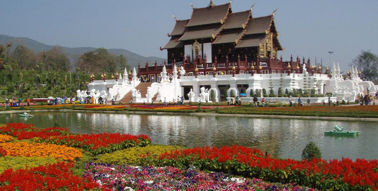 festivals and events in chiang mai