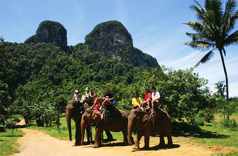 Elephant Sanctury in Phuket.jpg