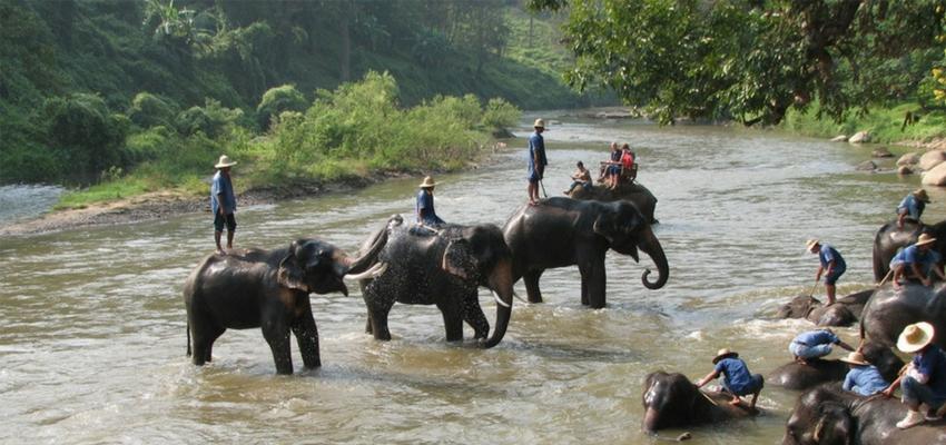 Travel around Chiang mai